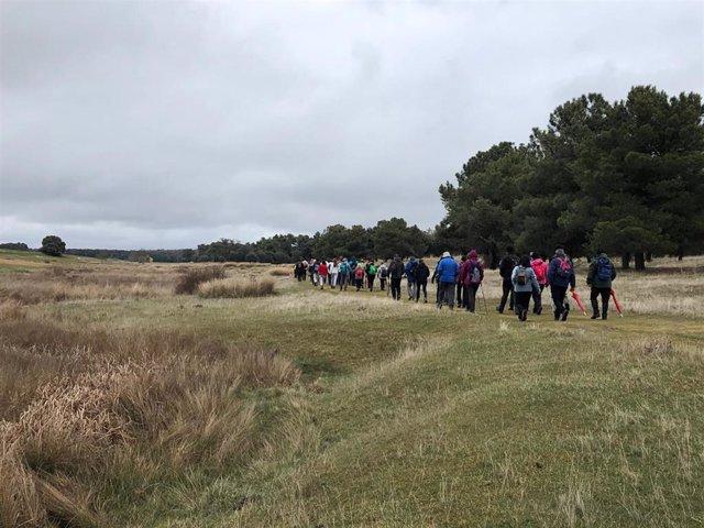 Un centenar de peregrinos participa en la cuarta etapa del Camino de San Frutos