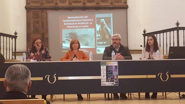 Jaén.- Arrancan en Úbeda las X Jornadas de Ciencia para Tod@s con previsión de r
