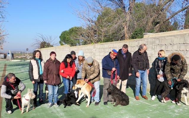 El Comú de Lleida xifra en 25% els animals que moren en la gossera municipal i