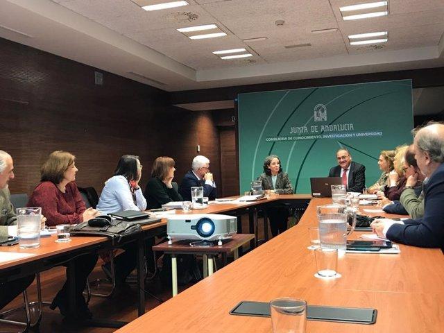 El Foro de los Consejos Sociales de Andalucía celebra su primer encuentro con la secretaria general de Universidades