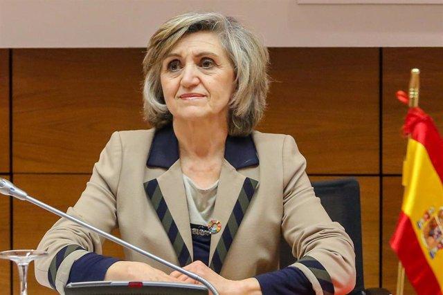 La ministra de Sanidad, Consumo y Bienestar Social, María Luisa Carcedo, preside la reunión del Pleno del Consejo Interterritorial de Salud