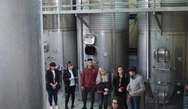 Les cambres d'Andorra, Girona, Lleida i Perpinyà fomenten els vins autòctons (CAMBRA DE COMERÇ DE GIRONA)