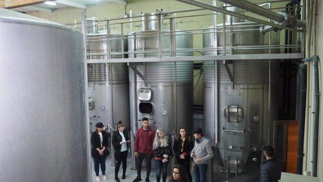 Agro.- Les càmeres d'Andorra, Girona, Lleida i Perpignan fomenten els vins autòctons