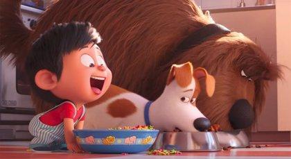 Nuevo tráiler de Mascotas 2: Max, el Capitán Pompón y sus amigos, en busca del bebé perdido