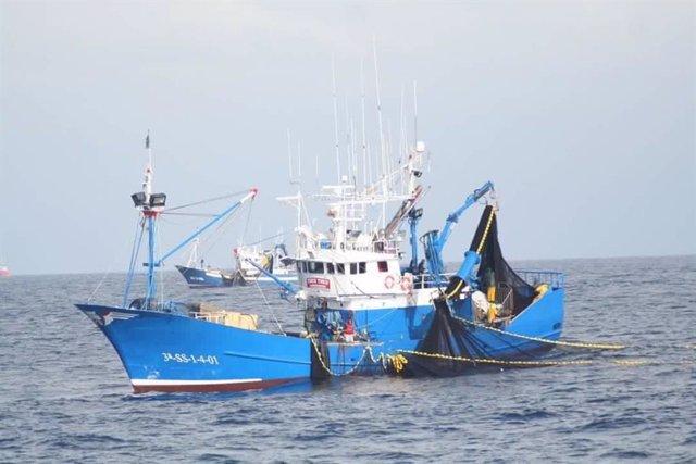 Pesca de sardina en el golfo de Bizkaia