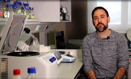 El IBBTEC lidera un estudio sobre los cambios en la organización 3D del genoma