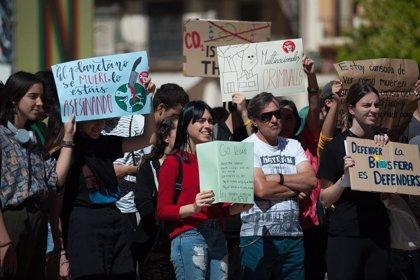 El movimiento 'Fridays for Future' convoca 22 protestas contra el cambio climático en el arranque de la campaña