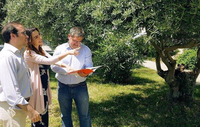 Málaga.-Cs en Diputación propone reconvertir los jardines de La Noria en un entorno de esparcimiento abierto todo el año
