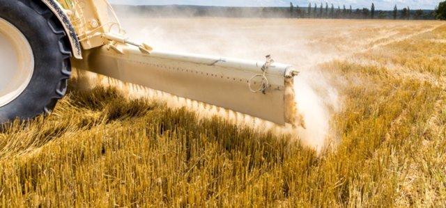 El Fogaiba amplía en 2,8 millones las subvenciones a jóvenes agricultores de Baleares