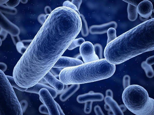 EEUU.- Las bacterias se asocian con virus para causar heridas crónicas