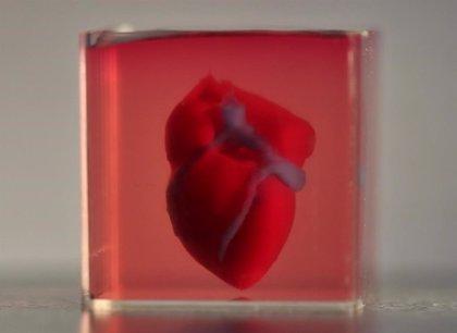 Científicos imprimen en 3D el primer corazón con tejido humano