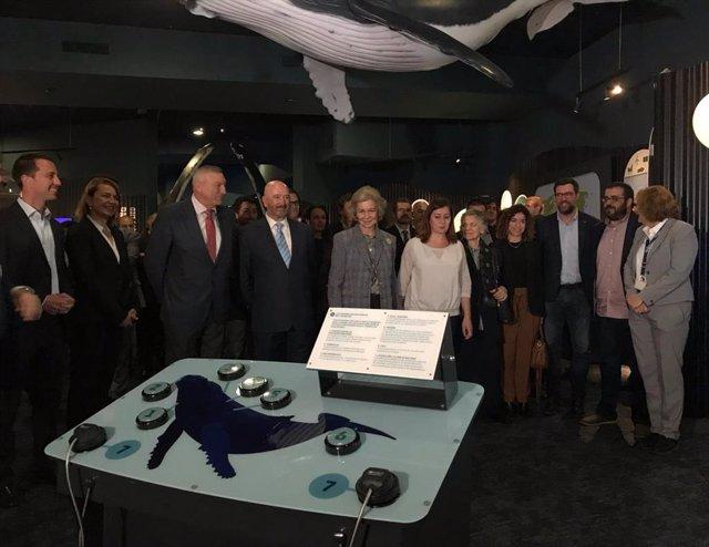 La Reina Sofia inaugura la projecció 'Gegantes de l'Oceà' sobre balenes geperudes en el Palma Aquarium