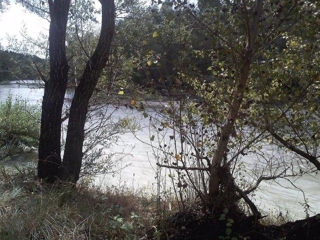 Riveras Del Río Gállego En Eres (Huesca)
