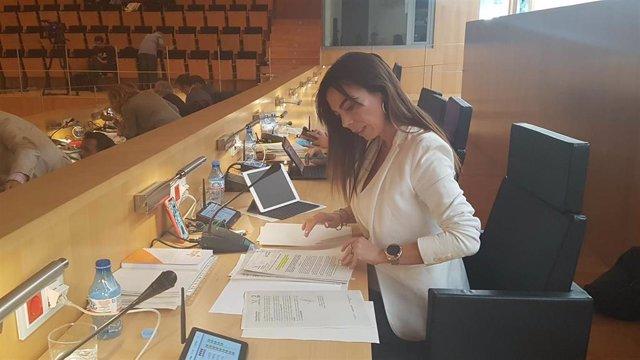 Málaga.- Cs pide que la Diputación se comprometa con el tercer hospital con una aportación mínima de un millón de euros