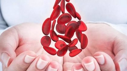 17 de abril: Día Mundial de la Hemofilia, ¿de qué se trata y por qué se celebra en esta fecha?
