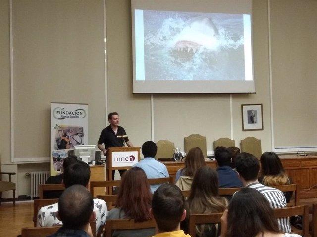 El gran tiburón blanco del Mediterráneo, antes abundante, es raro en la actualidad por la presión humana, según experto