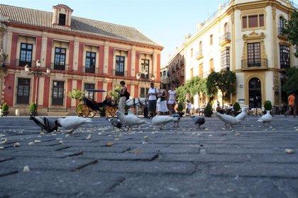 Desempleo y contaminación determinan la mayor mortalidad de zonas urbanas respecto a rurales en Andalucía, según estudio