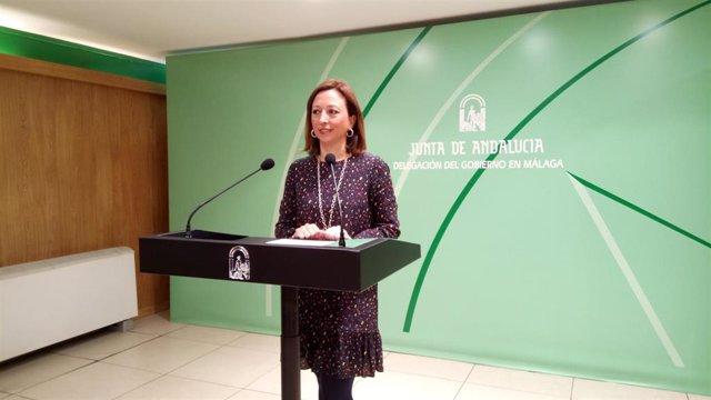 """Andalucía.- Navarro ve una """"buenísima noticia"""" la reactivación de las obras de ampliación del Hospital Costa del Sol"""