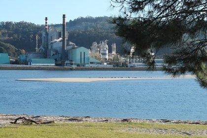 """El Gobierno apela a """"seguir la ley"""" con la planta de Ence en Pontevedra"""