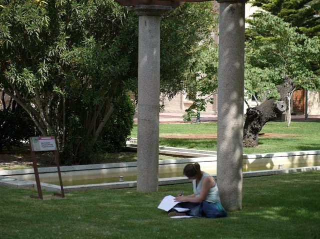 Universitario, Alumno, Universidad, Estudiante
