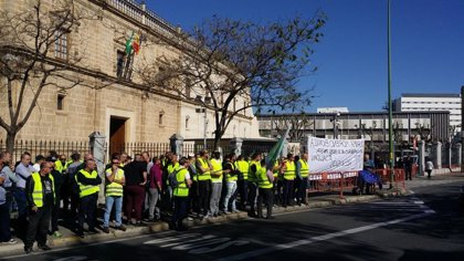 Élite convoca una caravana de coches el martes 23 en contra del borrador de la Junta sobre el taxi y los VTC