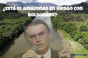 ¿Está el Amazonas en riesgo con Bolsonaro?, 4 razones que demuestran el peligro en el que se encuentra