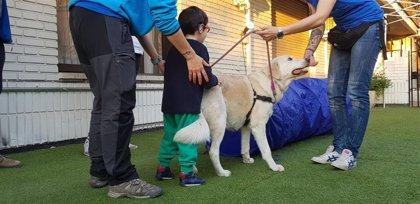 La URJC amplia su programa de terapia asistida con perros para menores con enfermedades neuromusculares