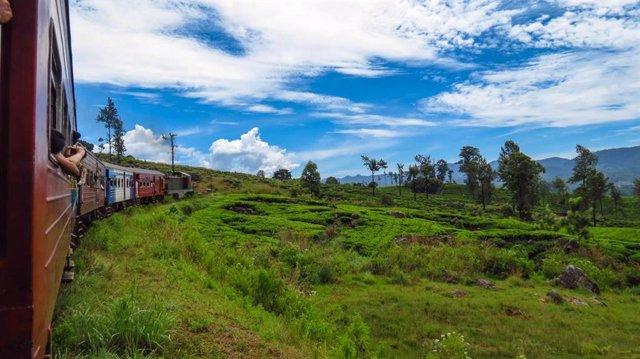 Paisaje en tren de Sri Lanka