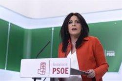 PSOE-A, sobre la crema d'un ninot de Puigdemont a Coripe: