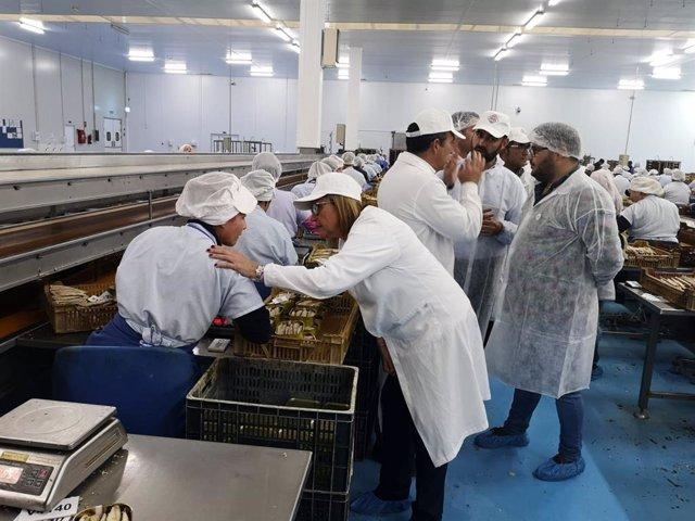 Huelva.- 28A.- Faneca (PSOE) traslada su apoyo al sector pesquero tradicional que apuesta por la innovación