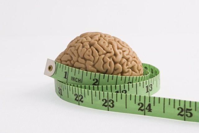 Adelgazar, cerebro
