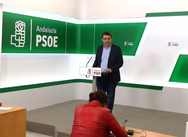 """PSOE-A espera que el plan de trabajo de comisión de Faffe tenga amplio consenso y se """"cumpla perfectamente con la tarea"""""""