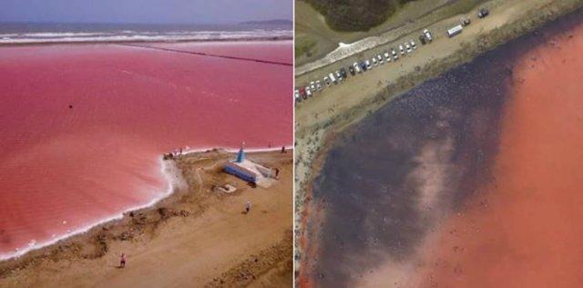 ¿Por Qué El Mar Rosado De Galerazamba, En Colombia, Se Puso Negro?