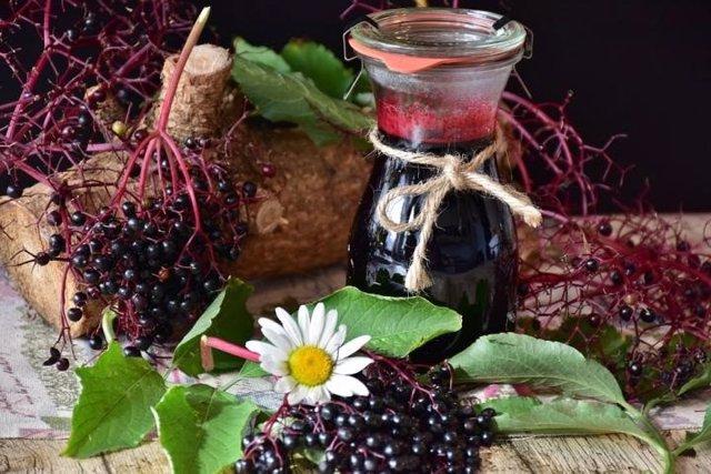 Comer saúco puede ayudar a minimizar los síntomas de la gripe