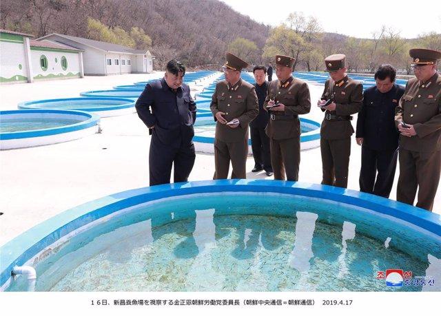 North Korean Leader kim visits Shinchang Fish Farm in Pyongyang