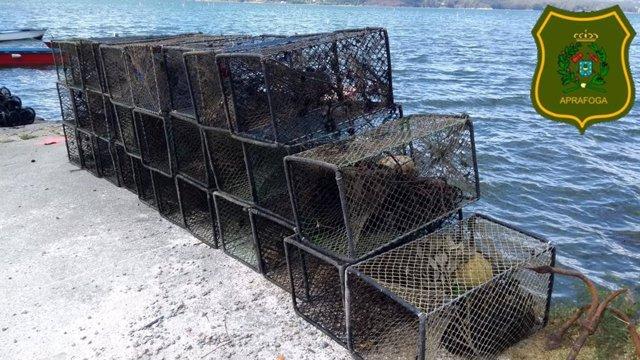 Pesca.- Un operativo contra el furtivismo fluvial decomisa más de 130 nasas cerca de la Illa de Cortegada