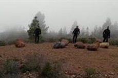 Troben els cossos sense vida de la dona i el nen desapareguts en Adeje (GUARDIA CIVIL)