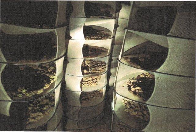 Alicante.- Sucesos.- Desmantelan un secadero de marihuana en Elda al acudir a una vivienda por un posible robo