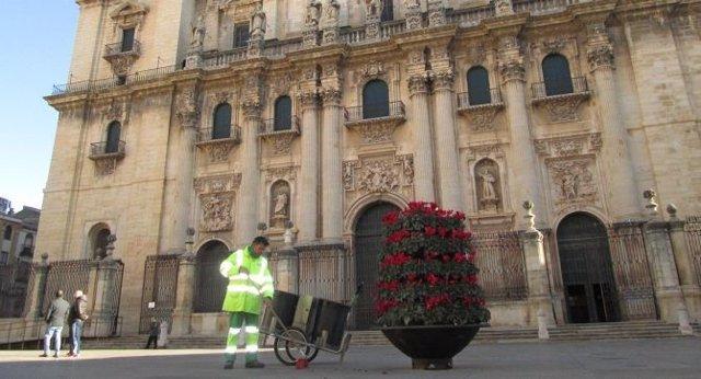 Servicio de limpieza de Jaén