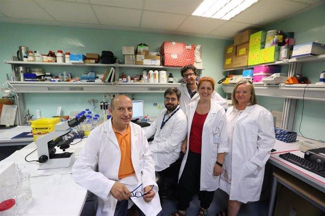 Andalucía.-Ibima lidera un proyecto para investigar cómo el alcohol o la cocaína influyen sobre trastornos psiquiátricos