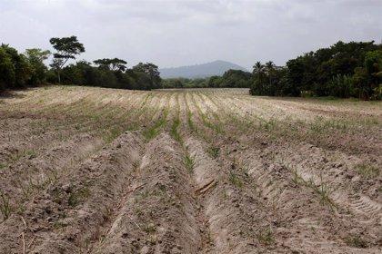Los desastres climatológicos dejan en riesgo a 1,4 millones de personas en Centroamérica
