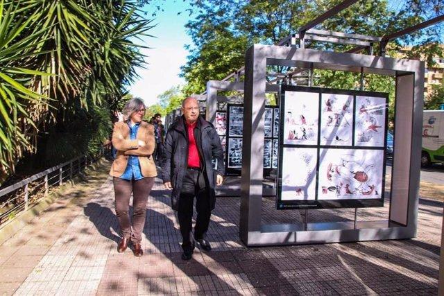 Comienza el certamen 'Caceres abierto' con 13 instalaciones artísticas repartidas por toda la ciudad
