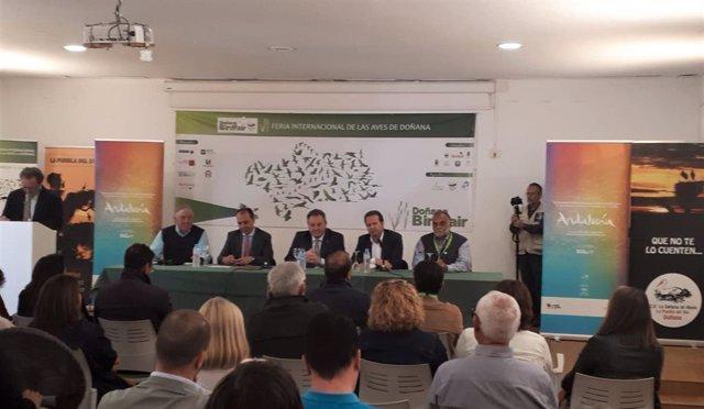Sevilla.- Arranca la VI Feria de las Aves de Doñana con ponencias, talleres, rutas y un concurso de fotografía