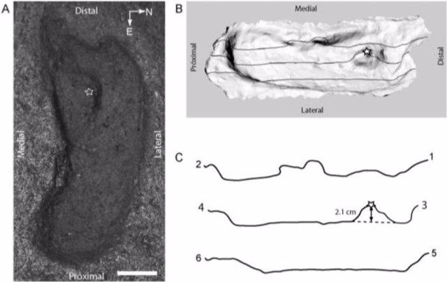 Descubren una huella en Chile, el rastro humano más antiguo de América