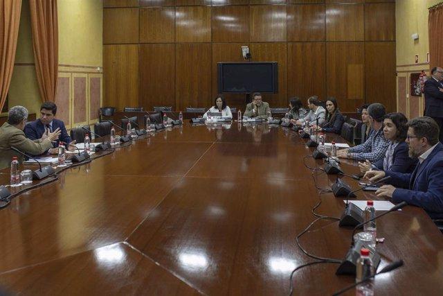 Reunión de la comisión de investigación parlamentaria sobre la extinta Fundación Faffe