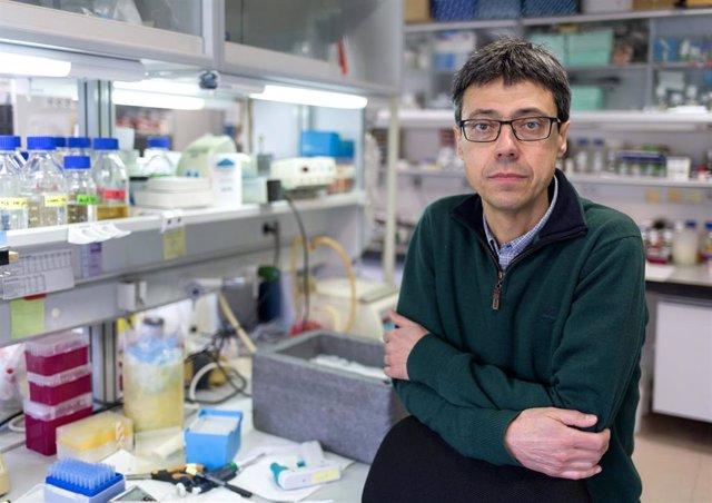Investigadores salmantinos desvelan un nuevo mecanismo molecular que previene la enfermedad inflamatoria intestinal