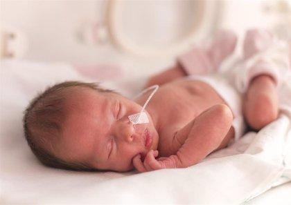 La nutrición de los bebés prematuros, clave para evitar trastornos neuropsicológicos