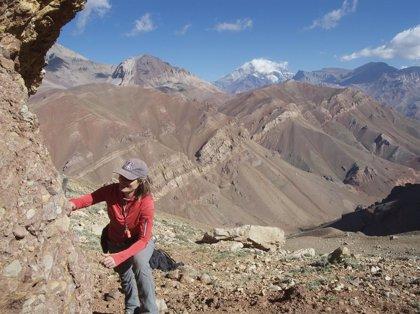 Cambios en la circulación atmosférica impulsaron la diversidad de herbívoros en Sudamérica hace 6 millones de años
