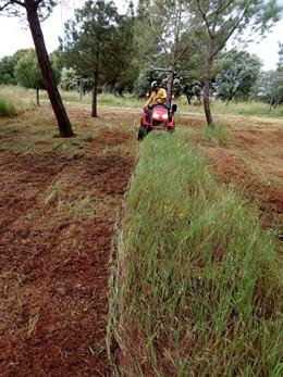 Jaén.- Trabajos de limpieza y reparación de senderos y miradores en los parques naturales de la provincia