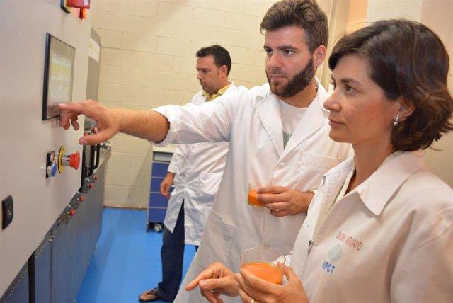 Politécnica de Cartagena consigue 800.000 euros del Ministerio de Ciencia para nueve proyectos de I+D